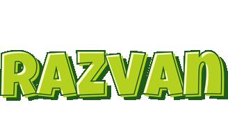 Razvan summer logo