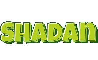 Shadan summer logo