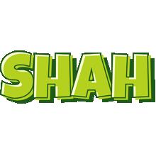 Shah summer logo