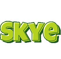 Skye summer logo