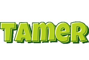 Tamer summer logo