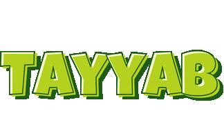 Tayyab summer logo