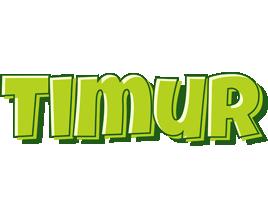 Timur summer logo