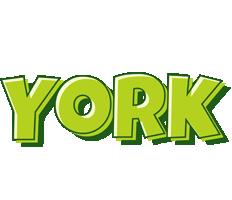 York summer logo