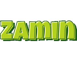 Zamin summer logo