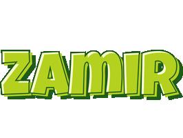 Zamir summer logo