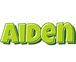 Aiden summer logo
