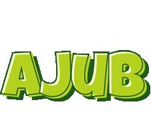 Ajub summer logo