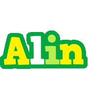 Alin soccer logo