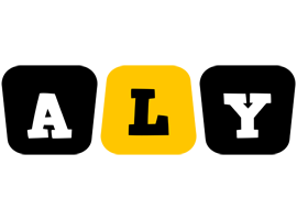 Aly boots logo