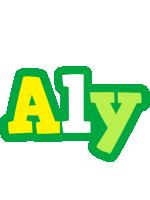 Aly soccer logo