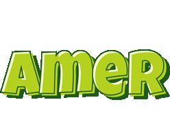 Amer summer logo