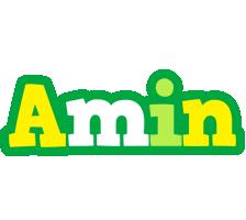 Amin soccer logo