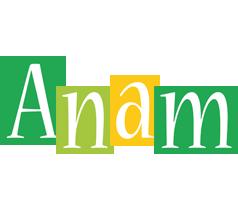 Anam lemonade logo