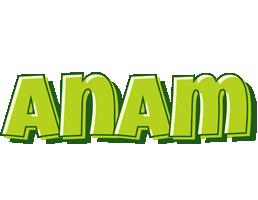 Anam summer logo