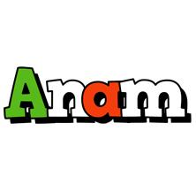 Anam venezia logo