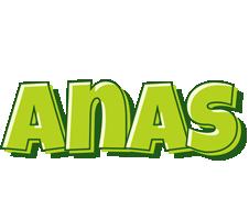 Anas summer logo