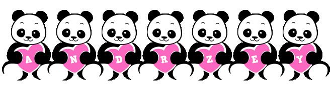 Andrzey love-panda logo