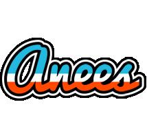 Anees america logo