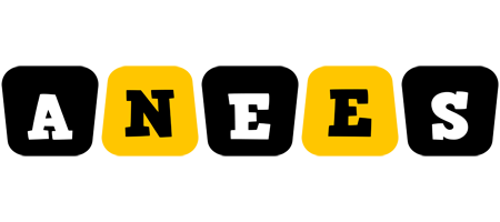 Anees boots logo