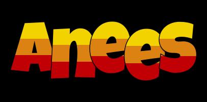 Anees jungle logo