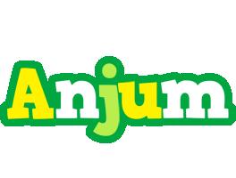 Anjum soccer logo