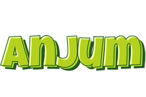 Anjum summer logo