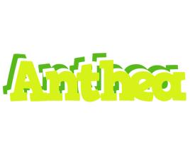 Anthea citrus logo