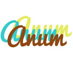 Anum cupcake logo