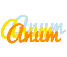 Anum energy logo