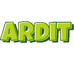 Ardit summer logo