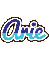 Arie raining logo
