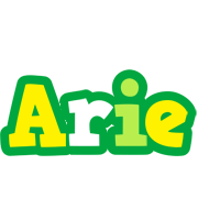 Arie soccer logo