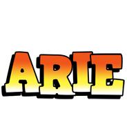 Arie sunset logo