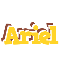 Ariel hotcup logo