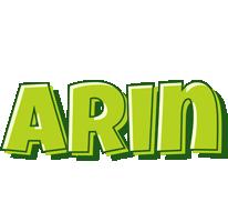 Arin summer logo