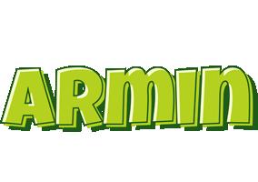Armin summer logo