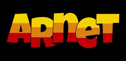 Arnet jungle logo