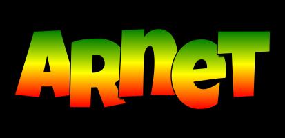 Arnet mango logo