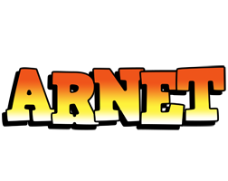 Arnet sunset logo