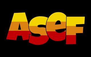 Asef jungle logo