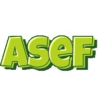 Asef summer logo