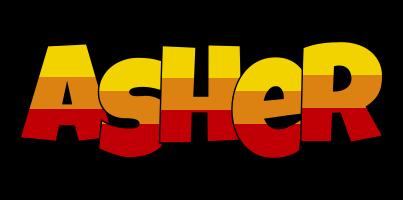 Asher jungle logo