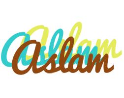 Aslam cupcake logo