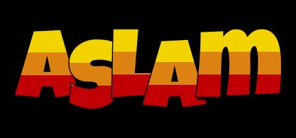 Aslam jungle logo