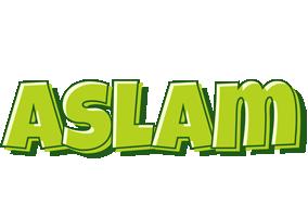 Aslam summer logo