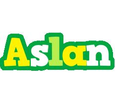 Aslan soccer logo