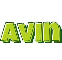 Avin summer logo