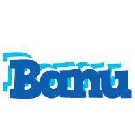 Banu business logo