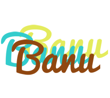 Banu cupcake logo